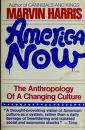 Cover of: American Now